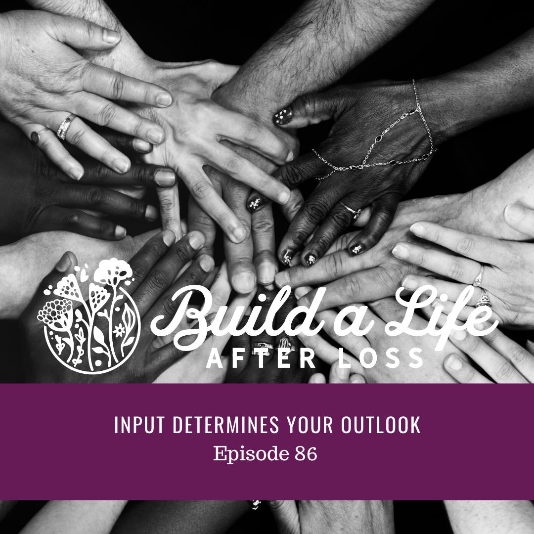 """Featured image for """"Ep #86 Input Determines Your Outlook"""""""
